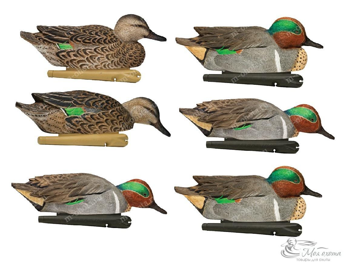 Комплект Avian-X чучел чирков - TOPFLIGHT Green-Winged Teal, 6шт.