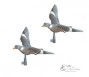Чучела голубей в летящей позе Sport Plast 2 шт.