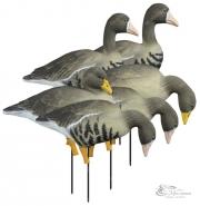 Полнообъемные чучела гусей